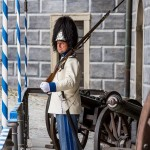 Schwarzenberský granátník na stráži, Schwarzenberská granátnická garda