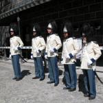 Granátníci po ceremonii, Schwarzenberská granátnická garda