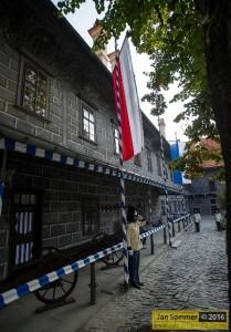 Český zemský prapor a schwarzenberský granátník, Foto : Jan Sommer